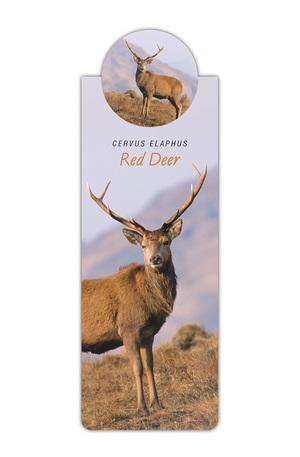 Продукт - Разделител за книга с диви животни - Елен