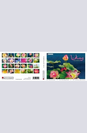Книга - Lotus