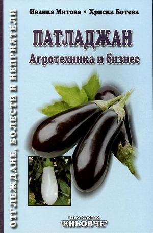Книга - Патладжан - Агротехника и бизнес