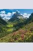 Книга - Календар Alps 2014